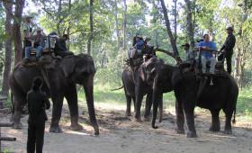 elephant-ridehungle-tour