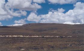 Tibet-yamdrok tour